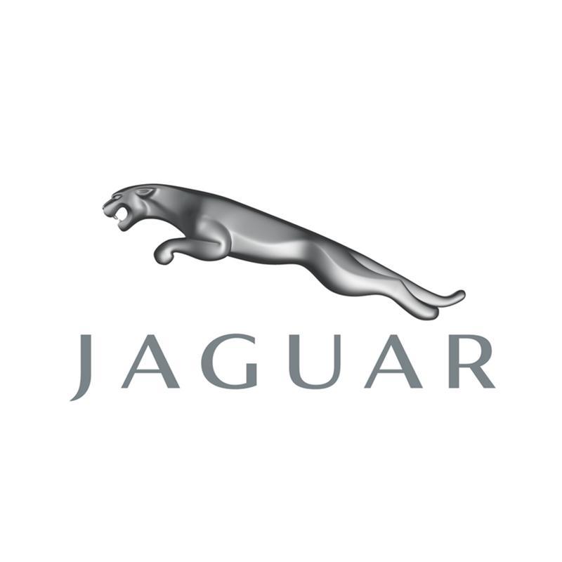 cliente-jaguar-telemaco